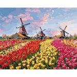 """Картина по номерам """"Красочные тюльпаны Голландии"""" ★★★★"""