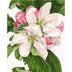 """Картина по номерам """"Яблочное цветение"""" ★★★★"""