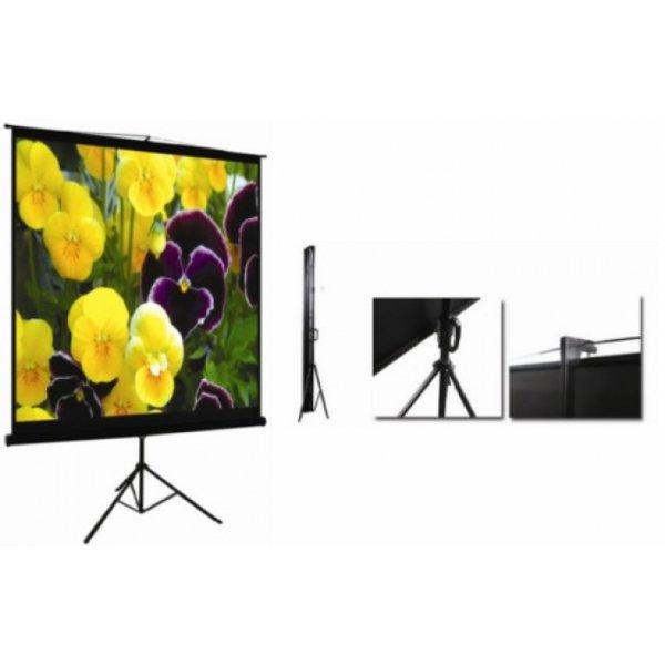 """Экран для проектора 100""""(200х150см) LOGAN PRT2"""